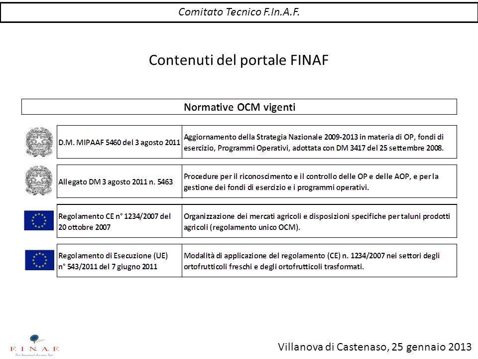 Villanova di Castenaso, 25 gennaio 2013 Contenuti del portale FINAF Area Soci Comitato Tecnico F.In.A.F.