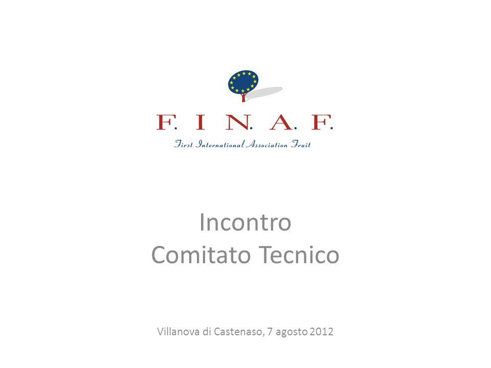 Incontro Comitato Tecnico Villanova di Castenaso, 7 agosto 2012