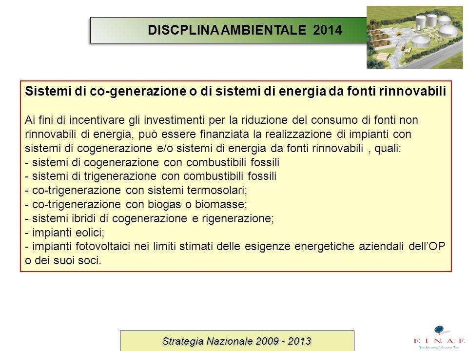 Strategia Nazionale 2009 - 2013 Sistemi di co-generazione o di sistemi di energia da fonti rinnovabili Ai fini di incentivare gli investimenti per la