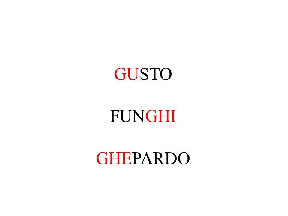 GUSTO FUNGHI GHEPARDO