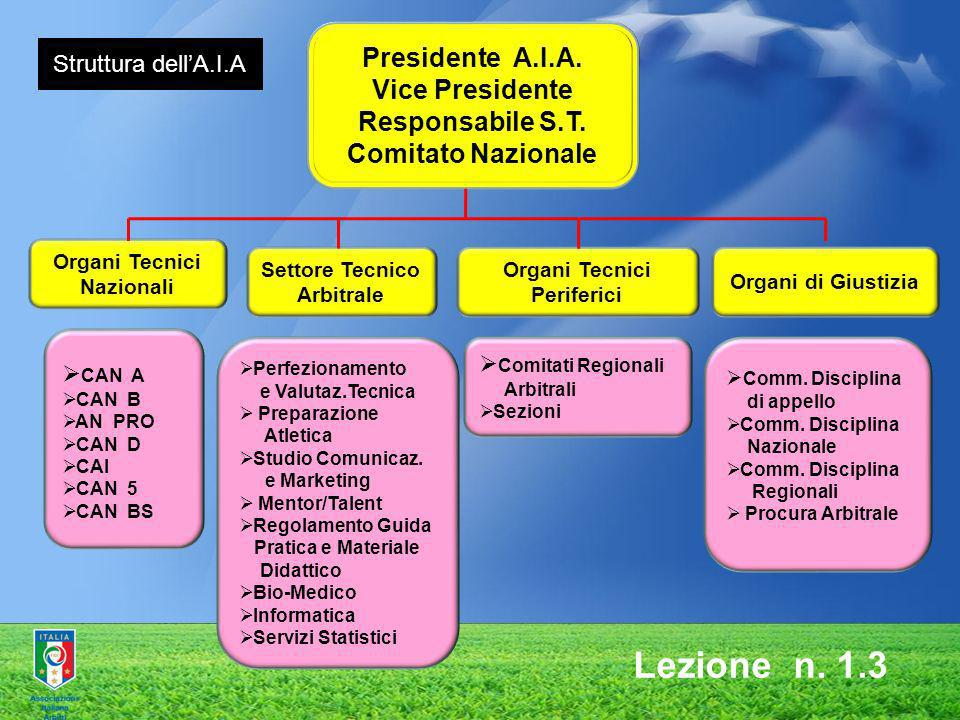 Presidente A.I.A. Vice Presidente Responsabile S.T. Comitato Nazionale Organi Tecnici Nazionali CAN A CAN B AN PRO CAN D CAI CAN 5 CAN BS Settore Tecn