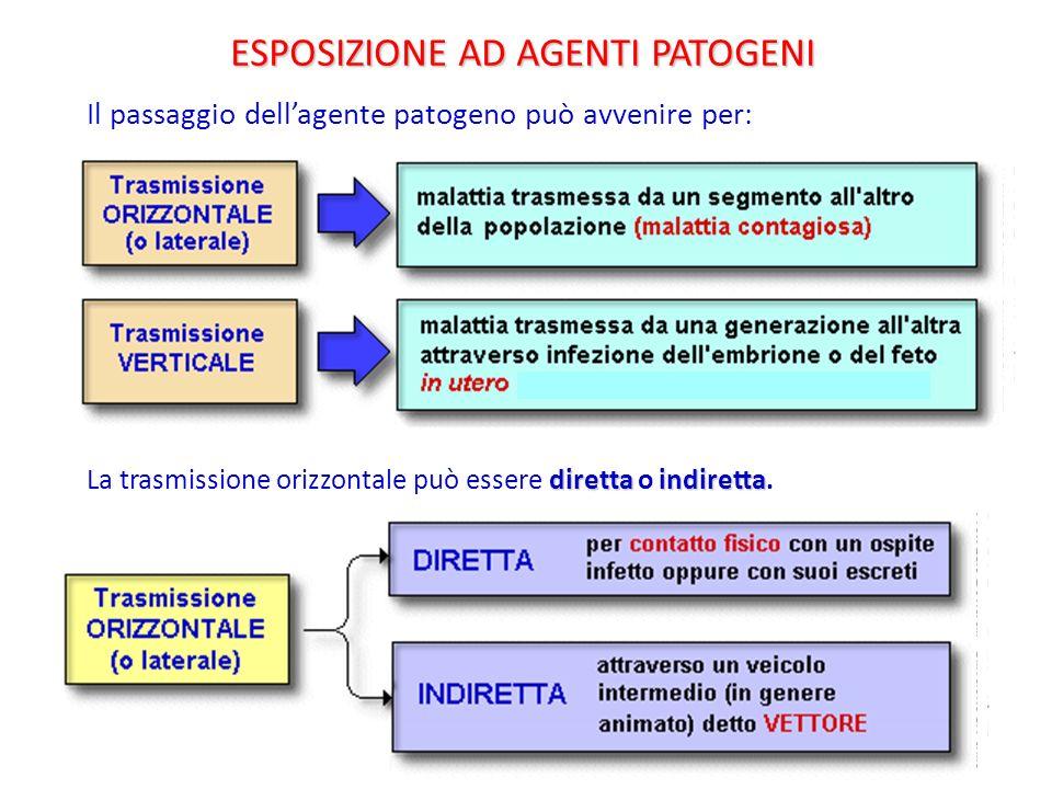 Il passaggio dellagente patogeno può avvenire per: diretta indiretta La trasmissione orizzontale può essere diretta o indiretta. ESPOSIZIONE AD AGENTI
