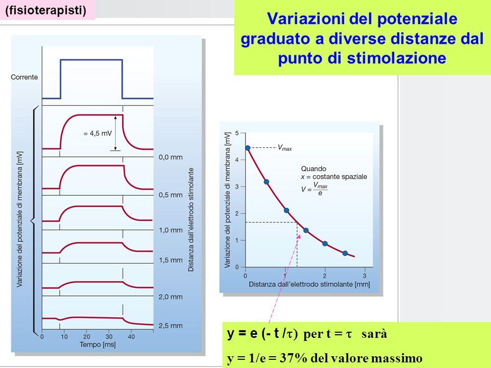 Tutti questi fenomeni costituiscono dei Potenziali graduati ossia si propagano con decremento secondo la legge di Ohm: elettrotono. Potenziale dazione