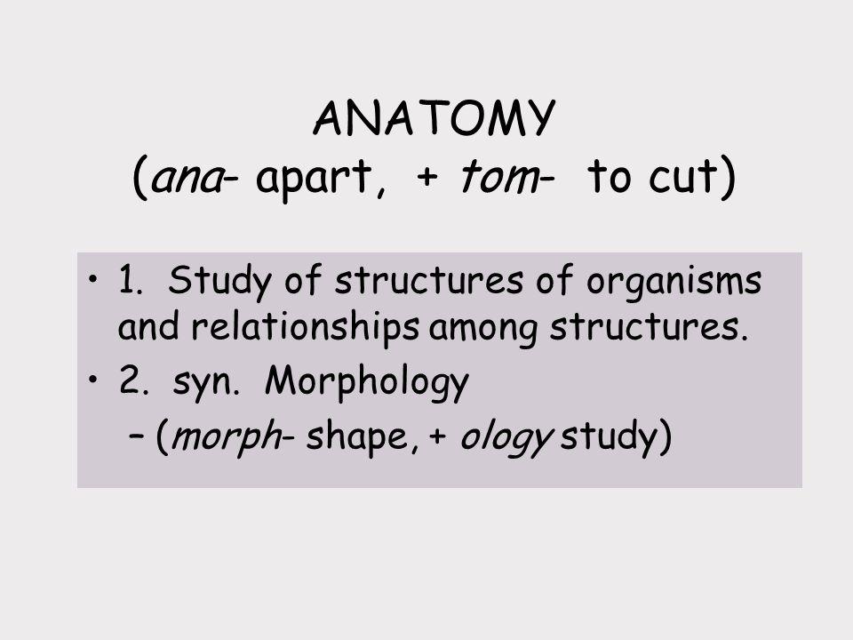 ANATOMY (ana- apart, + tom- to cut) 1.
