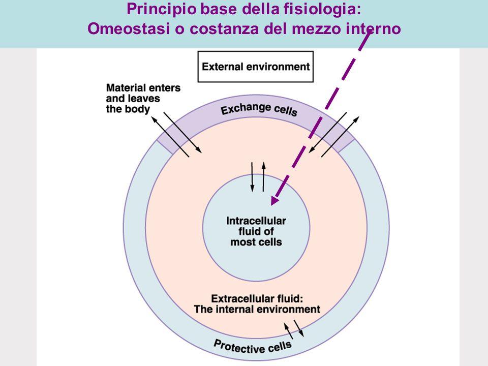 Principio base della fisiologia: Omeostasi o costanza del mezzo interno