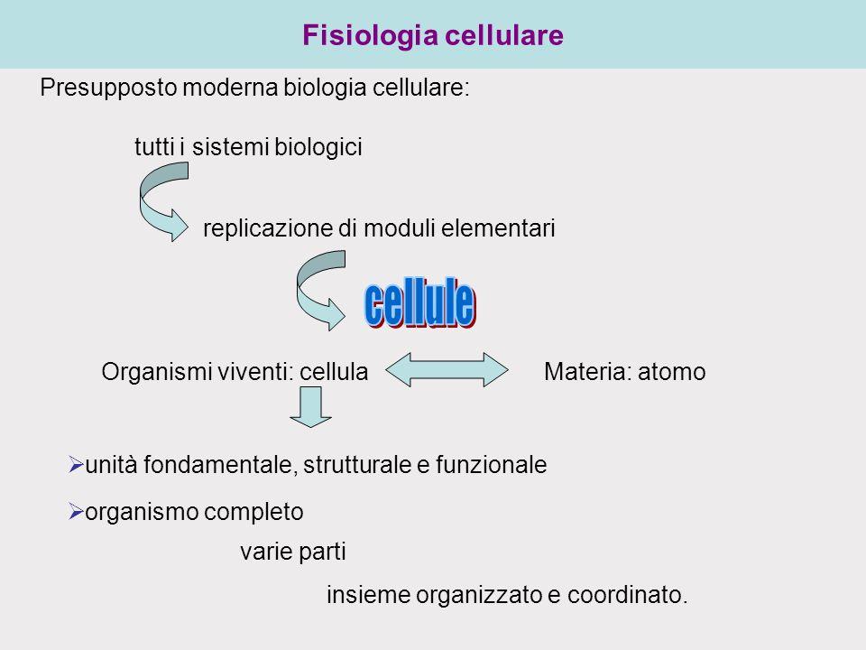 Fisiologia cellulare Presupposto moderna biologia cellulare: tutti i sistemi biologici replicazione di moduli elementari varie parti insieme organizzato e coordinato.