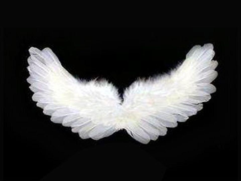 nel ciel che più de la sua luce prende fu io, e vide cose che ridire né sa né può chi di là su discende