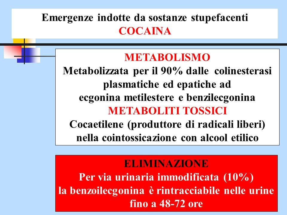METABOLISMO Metabolizzata per il 90% dalle colinesterasi plasmatiche ed epatiche ad ecgonina metilestere e benzilecgonina METABOLITI TOSSICI Cocaetile