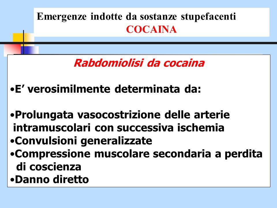 Rabdomiolisi da cocaina E verosimilmente determinata da: Prolungata vasocostrizione delle arterie intramuscolari con successiva ischemia Convulsioni g