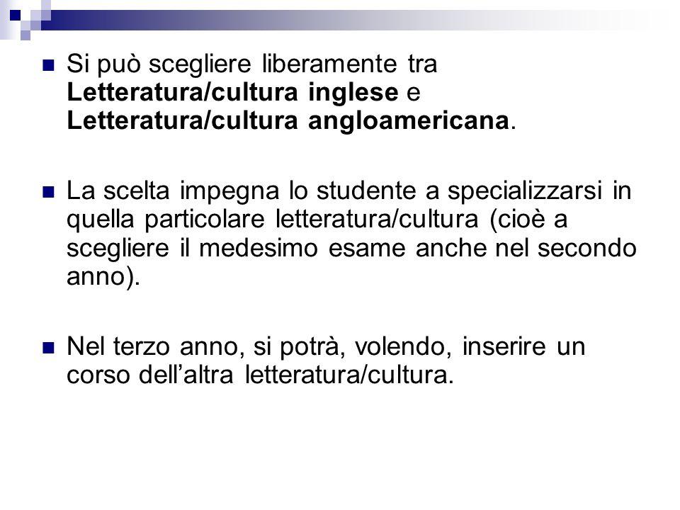 Si può scegliere liberamente tra Letteratura/cultura inglese e Letteratura/cultura angloamericana. La scelta impegna lo studente a specializzarsi in q