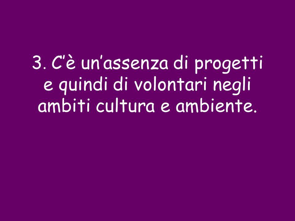 3. Cè unassenza di progetti e quindi di volontari negli ambiti cultura e ambiente.