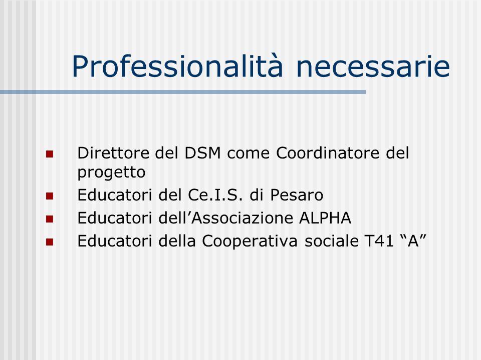 Professionalità necessarie Direttore del DSM come Coordinatore del progetto Educatori del Ce.I.S. di Pesaro Educatori dellAssociazione ALPHA Educatori