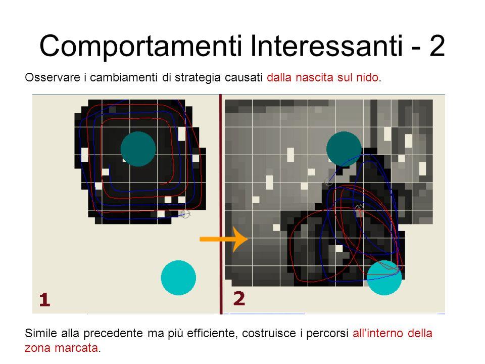 Comportamenti Interessanti - 2 Osservare i cambiamenti di strategia causati dalla nascita sul nido. Simile alla precedente ma più efficiente, costruis