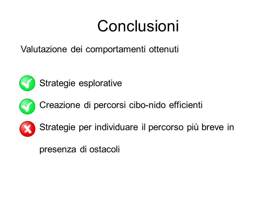 Conclusioni Valutazione dei comportamenti ottenuti Strategie esplorative Creazione di percorsi cibo-nido efficienti Strategie per individuare il perco