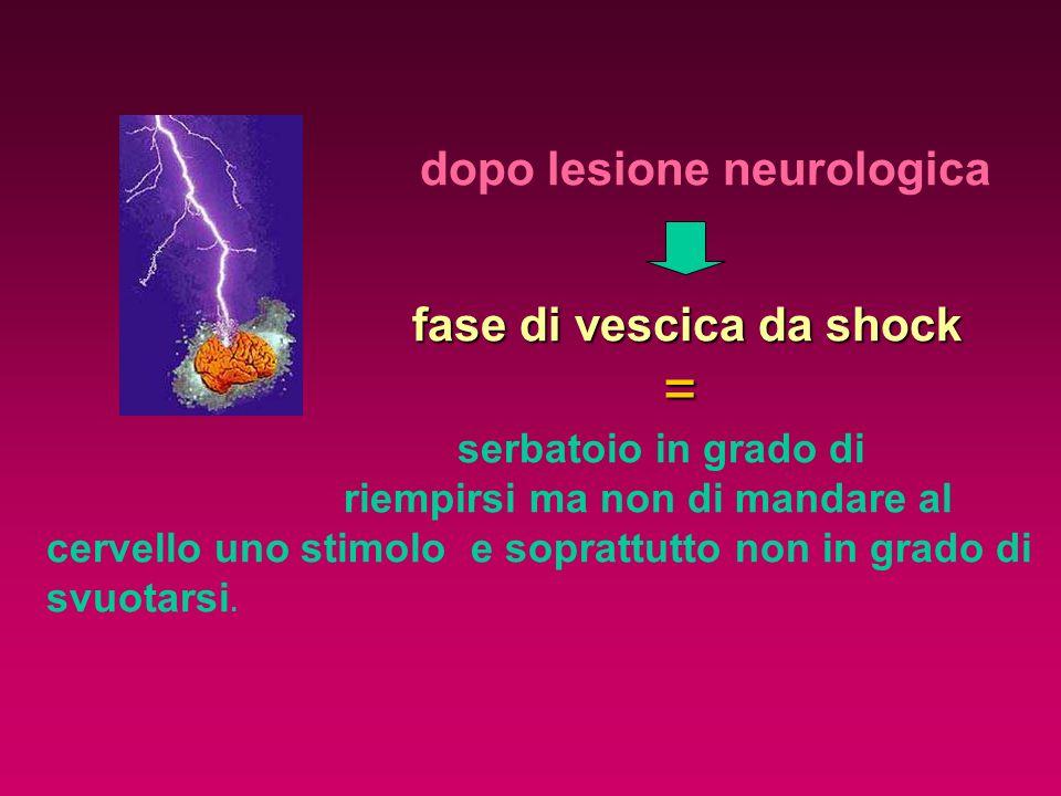 dopo lesione neurologica fase di vescica da shock = serbatoio in grado di riempirsi ma non di mandare al cervello uno stimolo e soprattutto non in gra