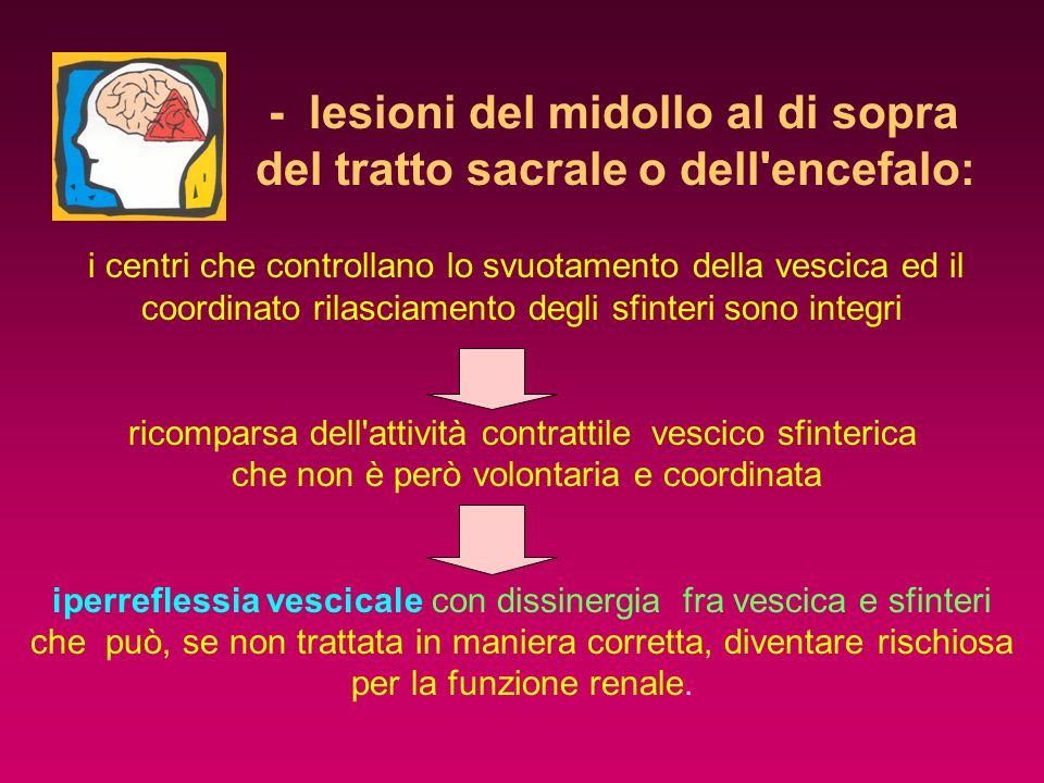 - lesioni del midollo al di sopra del tratto sacrale o dell'encefalo: i centri che controllano lo svuotamento della vescica ed il coordinato rilasciam