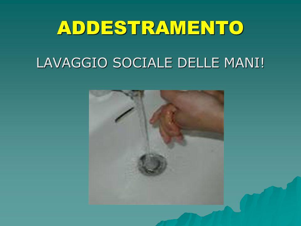 LAVAGGIO SOCIALE DELLE MANI! ADDESTRAMENTO