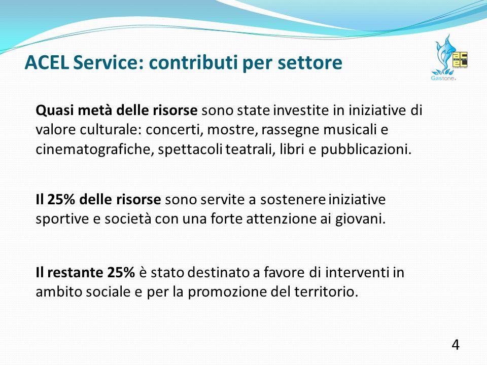 ACEL Service: contributi erogati nel 2010 3