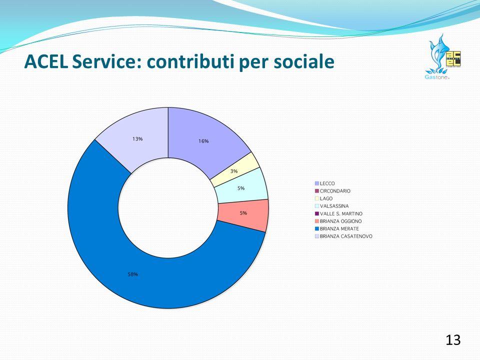 ACEL Service: contributi per sociale 12 Il nostro territorio si caratterizza per la presenza di un ricco tessuto di volontariato, che opera nei diversi ambiti del sociale.
