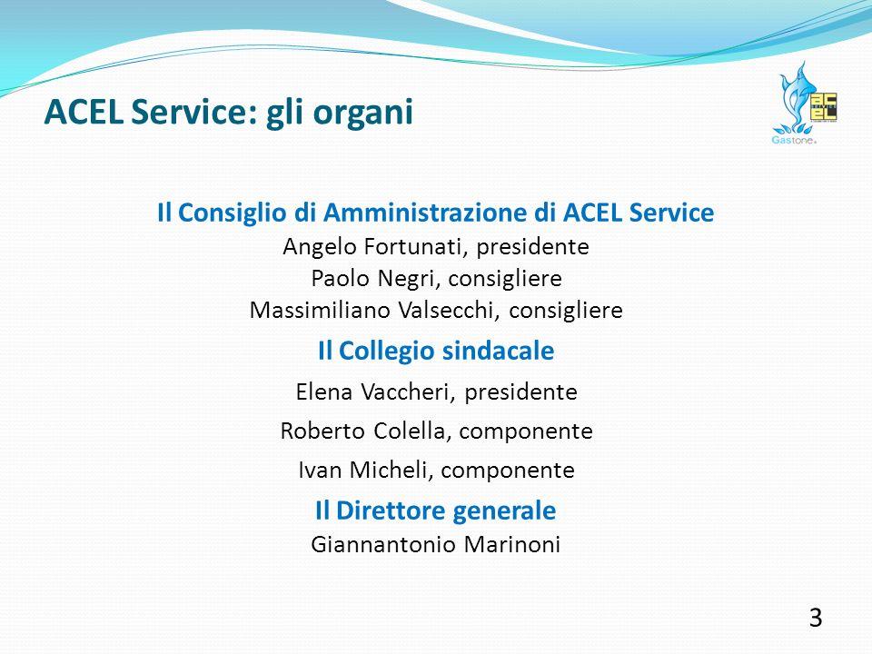 ACEL Service: contributi per sociale 13