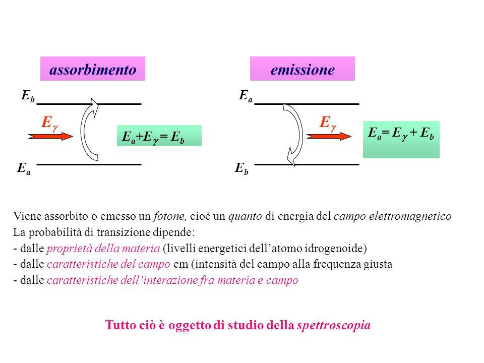 E a +E = E b EaEa EbEb E assorbimento E a = E + E b EbEb EaEa E emissione Viene assorbito o emesso un fotone, cioè un quanto di energia del campo elettromagnetico La probabilità di transizione dipende: - dalle proprietà della materia (livelli energetici dellatomo idrogenoide) - dalle caratteristiche del campo em (intensità del campo alla frequenza giusta - dalle caratteristiche dellinterazione fra materia e campo Tutto ciò è oggetto di studio della spettroscopia