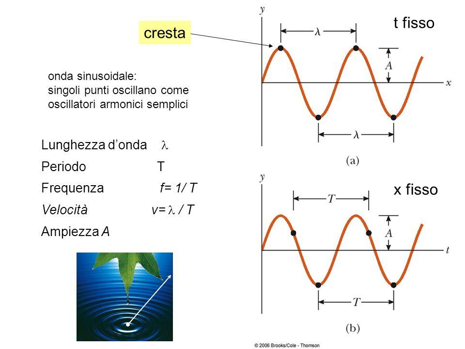 cresta t fisso x fisso Lunghezza donda Periodo T Frequenza f= 1/ T Velocità v= / T Ampiezza A onda sinusoidale: singoli punti oscillano come oscillato