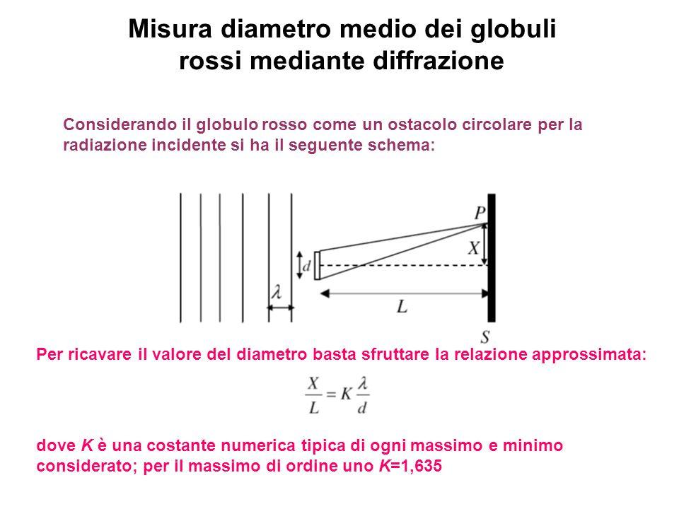 Misura diametro medio dei globuli rossi mediante diffrazione Considerando il globulo rosso come un ostacolo circolare per la radiazione incidente si h