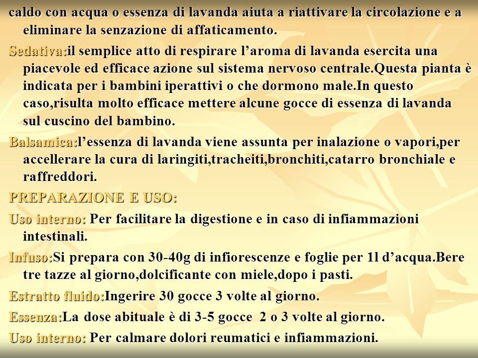 Hanno partecipato a questo progetto gli alunni di IV e V F del liceo F.De Sanctis con laiuto della prof.ssa.Rosetta Tomeo.