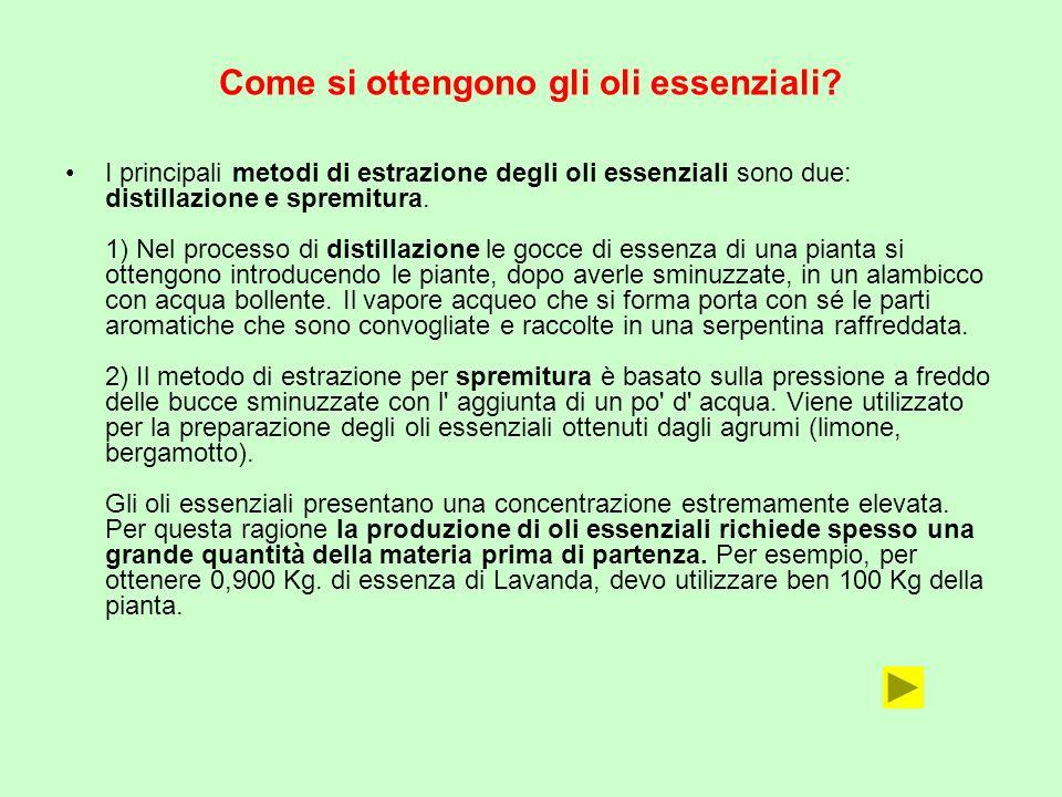 Come si ottengono gli oli essenziali? I principali metodi di estrazione degli oli essenziali sono due: distillazione e spremitura. 1) Nel processo di