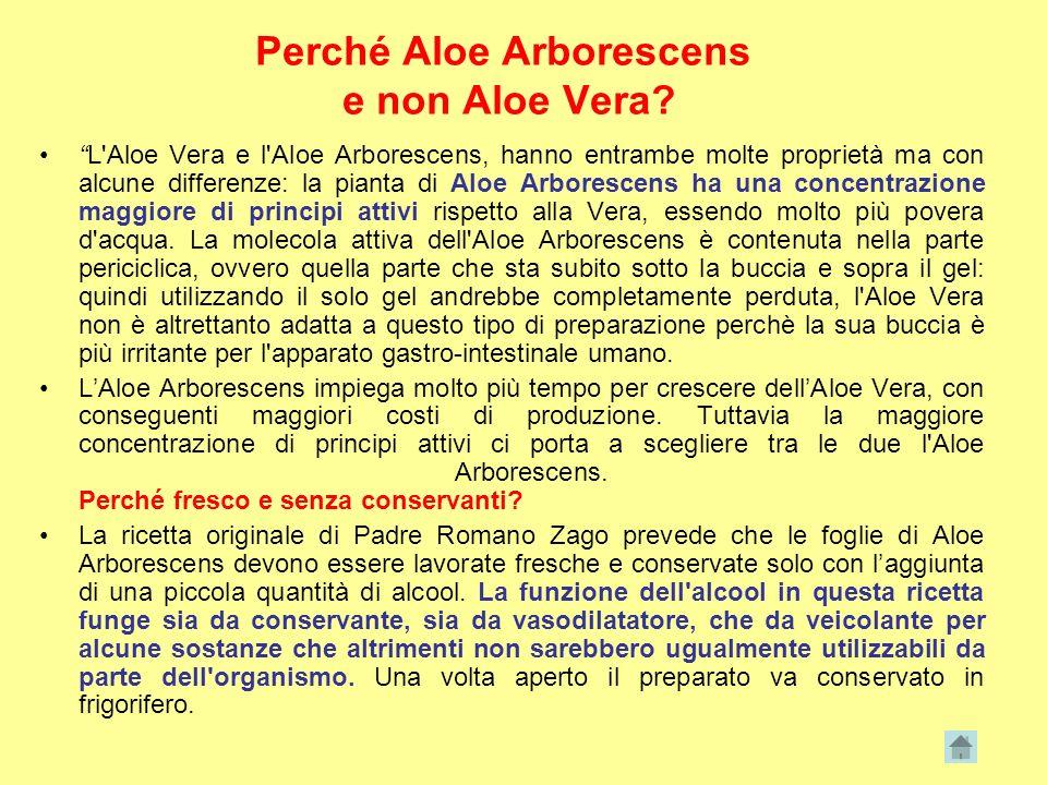 Perché Aloe Arborescens e non Aloe Vera? L'Aloe Vera e l'Aloe Arborescens, hanno entrambe molte proprietà ma con alcune differenze: la pianta di Aloe