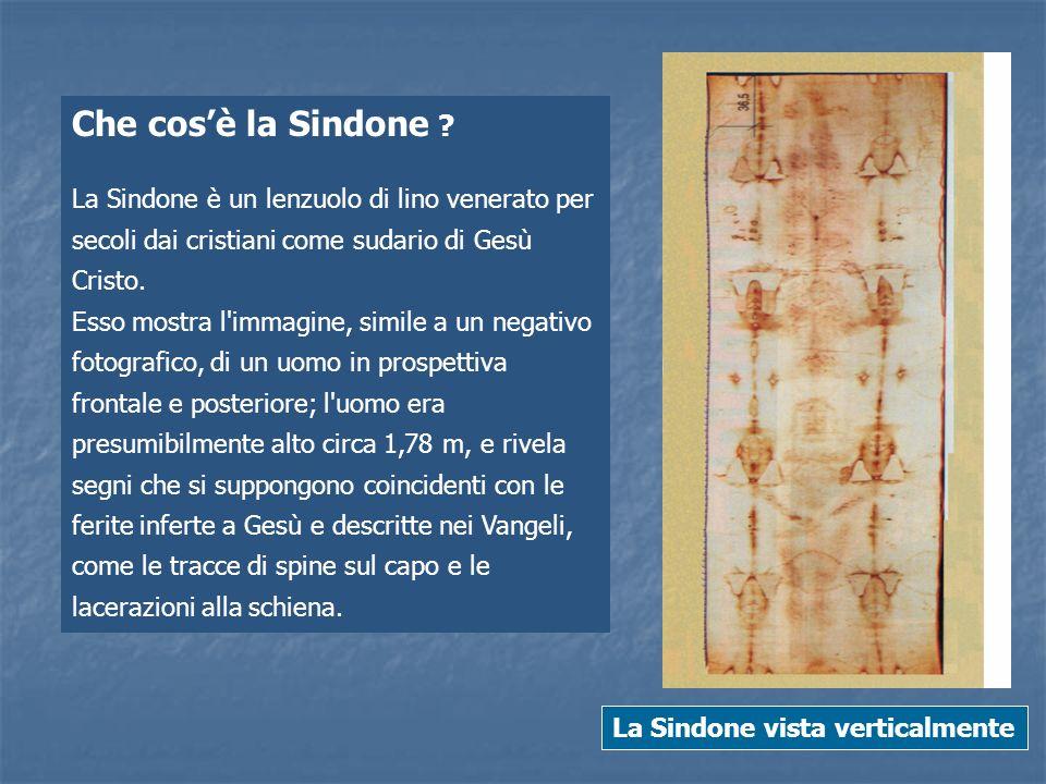 Che cosè la Sindone ? La Sindone è un lenzuolo di lino venerato per secoli dai cristiani come sudario di Gesù Cristo. Esso mostra l'immagine, simile a