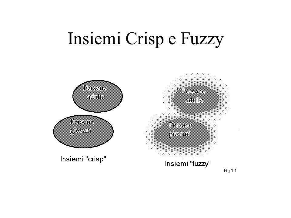 Insiemi Crisp e Fuzzy