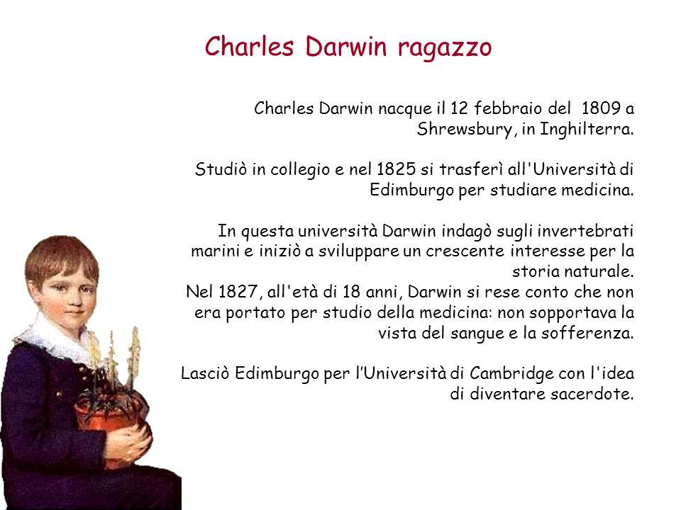 Charles Darwin ragazzo Charles Darwin nacque il 12 febbraio del 1809 a Shrewsbury, in Inghilterra. Studiò in collegio e nel 1825 si trasferì all'Unive