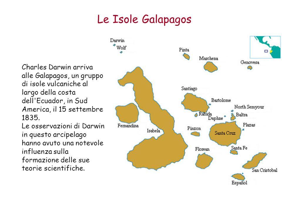 Le Isole Galapagos Charles Darwin arriva alle Galapagos, un gruppo di isole vulcaniche al largo della costa dell'Ecuador, in Sud America, il 15 settem