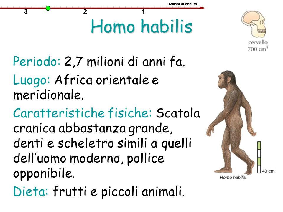 Homo habilis Periodo: 2,7 milioni di anni fa. Luogo: Africa orientale e meridionale. Caratteristiche fisiche: Scatola cranica abbastanza grande, denti
