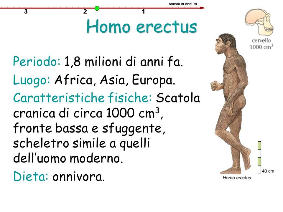 Homo erectus Periodo: 1,8 milioni di anni fa. Luogo: Africa, Asia, Europa. Caratteristiche fisiche: Scatola cranica di circa 1000 cm 3, fronte bassa e