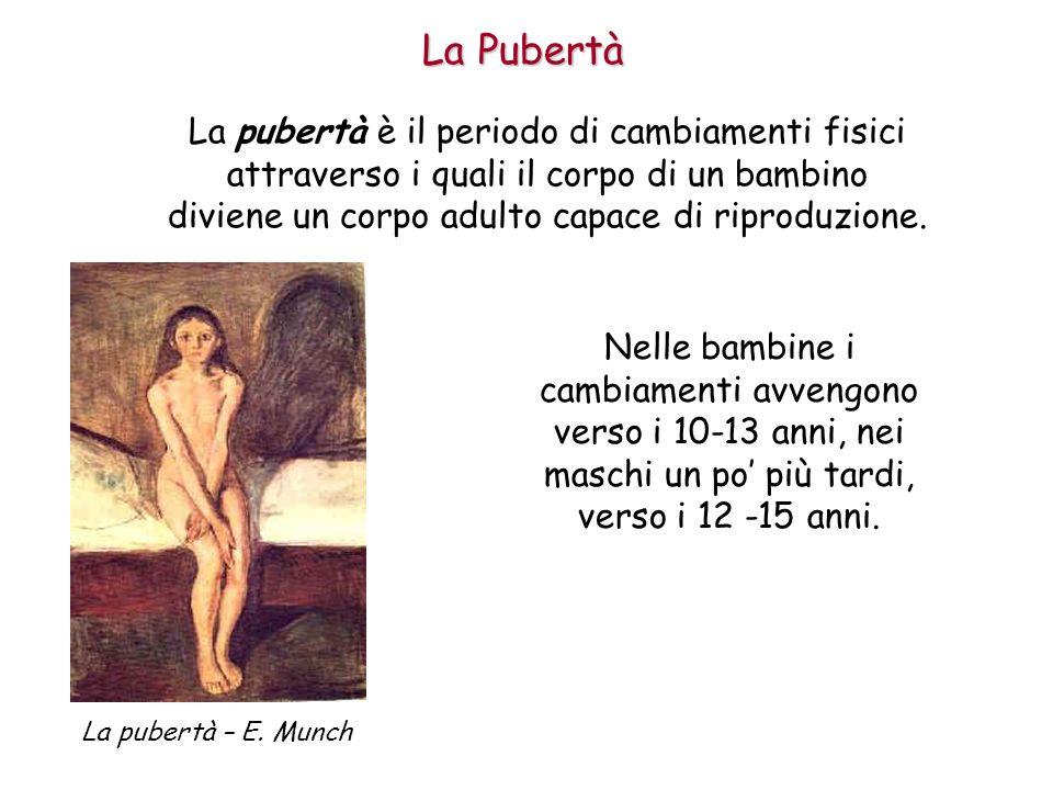 La Pubertà La pubertà è il periodo di cambiamenti fisici attraverso i quali il corpo di un bambino diviene un corpo adulto capace di riproduzione.