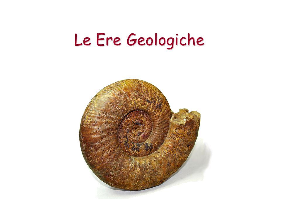 La Storia della Vita sulla Terra La Terra, secondo gli scienziati, ha circa 4,6 miliardi di anni e la vita sul pianeta è iniziata circa 3,5 miliardi di anni fa!