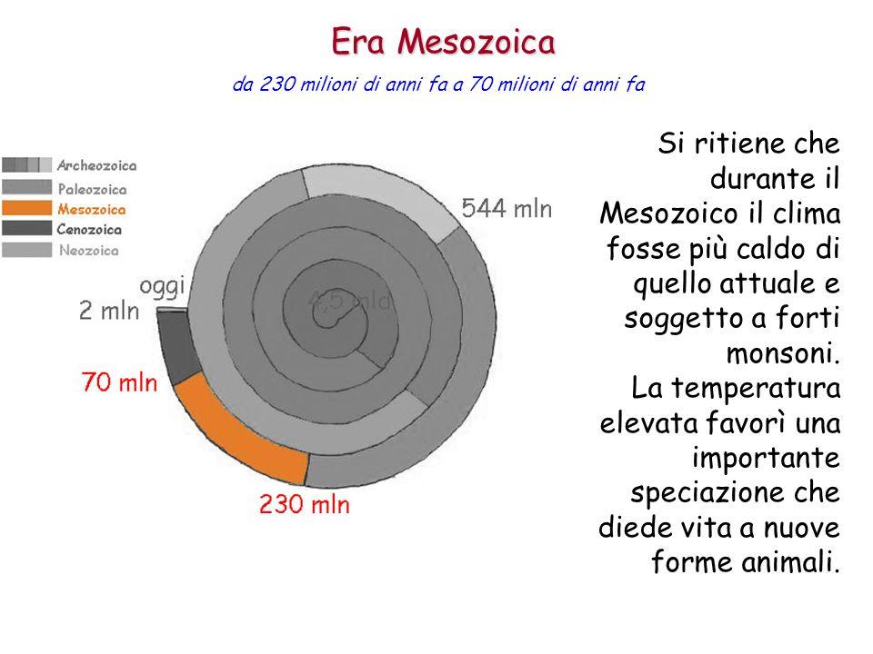 Si ritiene che durante il Mesozoico il clima fosse più caldo di quello attuale e soggetto a forti monsoni. La temperatura elevata favorì una important