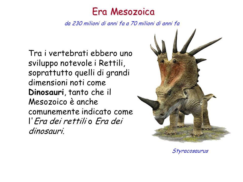 Tra i vertebrati ebbero uno sviluppo notevole i Rettili, soprattutto quelli di grandi dimensioni noti come Dinosauri, tanto che il Mesozoico è anche c