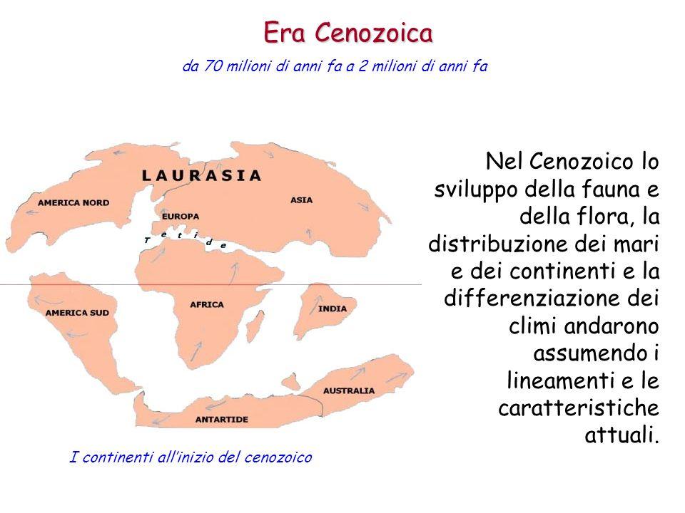 Nel Cenozoico lo sviluppo della fauna e della flora, la distribuzione dei mari e dei continenti e la differenziazione dei climi andarono assumendo i l