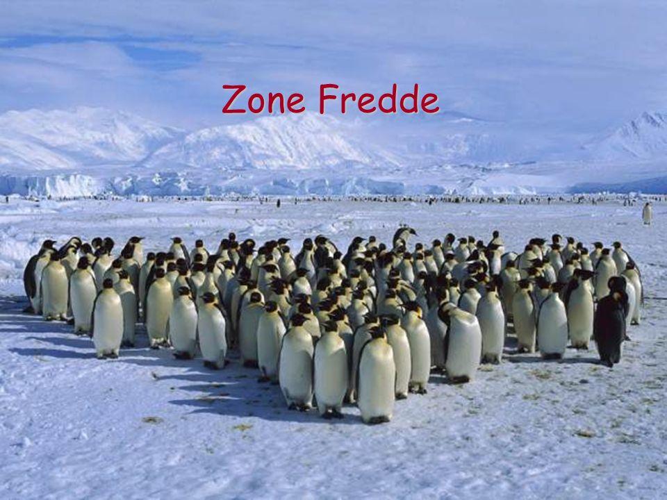 Zone Fredde