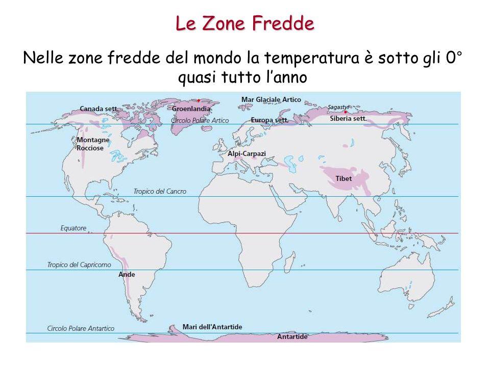 Le Zone Fredde Nelle zone fredde del mondo la temperatura è sotto gli 0° quasi tutto lanno