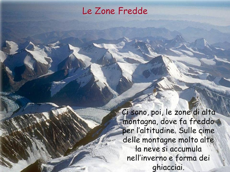 Ci sono, poi, le zone di alta montagna, dove fa freddo per laltitudine. Sulle cime delle montagne molto alte la neve si accumula nellinverno e forma d