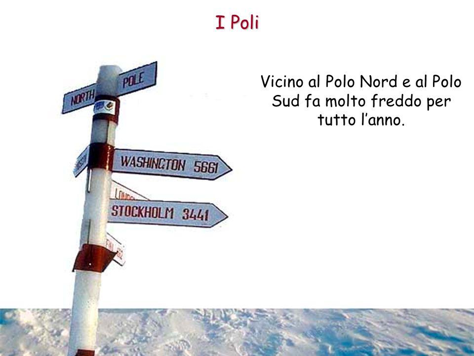 Vicino al Polo Nord e al Polo Sud fa molto freddo per tutto lanno. I Poli