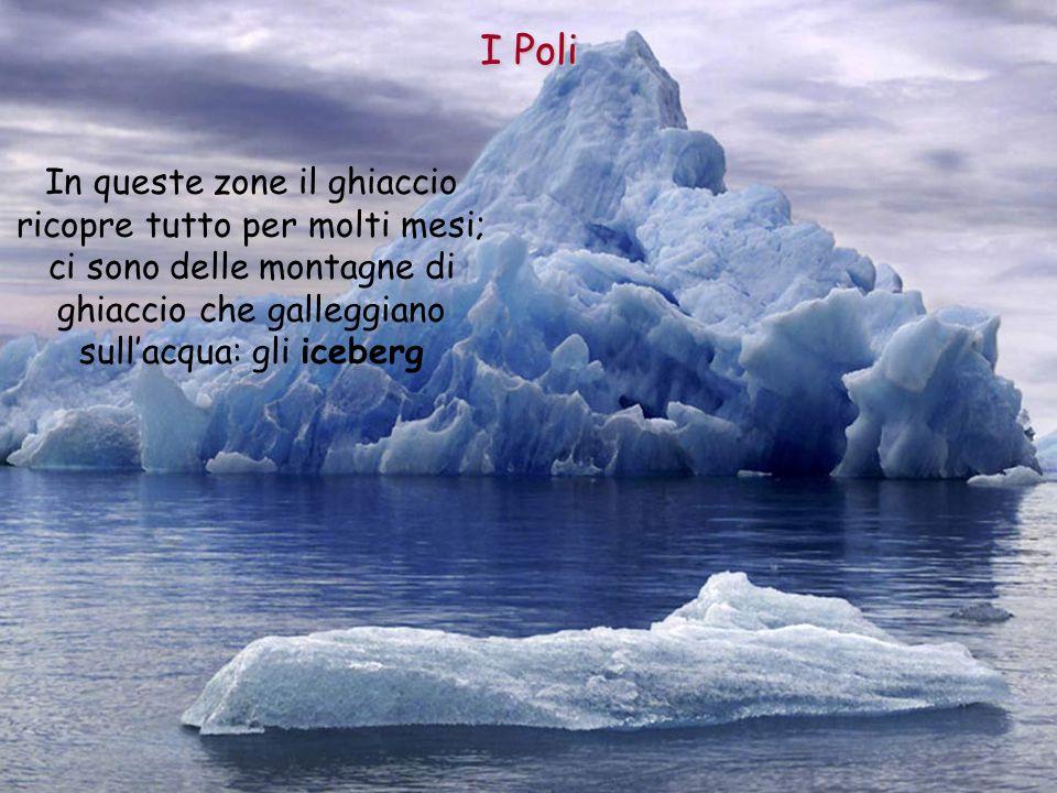 In queste zone il ghiaccio ricopre tutto per molti mesi; ci sono delle montagne di ghiaccio che galleggiano sullacqua: gli iceberg I Poli
