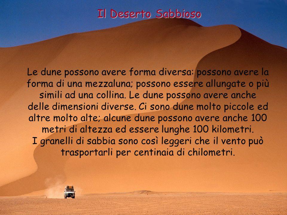 Il Deserto Sabbioso Le dune possono avere forma diversa: possono avere la forma di una mezzaluna; possono essere allungate o più simili ad una collina