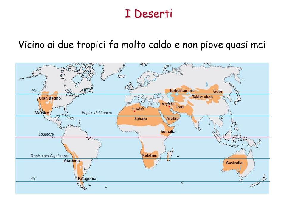 I Deserti Le zone intorno ai tropici hanno un clima molto caldo, soprattutto durante lestate quando la temperatura supera i 35°; in molte di queste regioni non piove quasi mai e gli ambienti naturali sono il deserto e il predeserto.