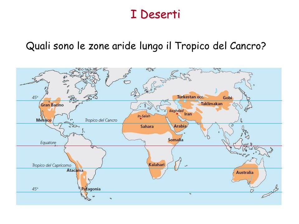 I Deserti Quali sono le zone aride lungo il Tropico del Cancro?