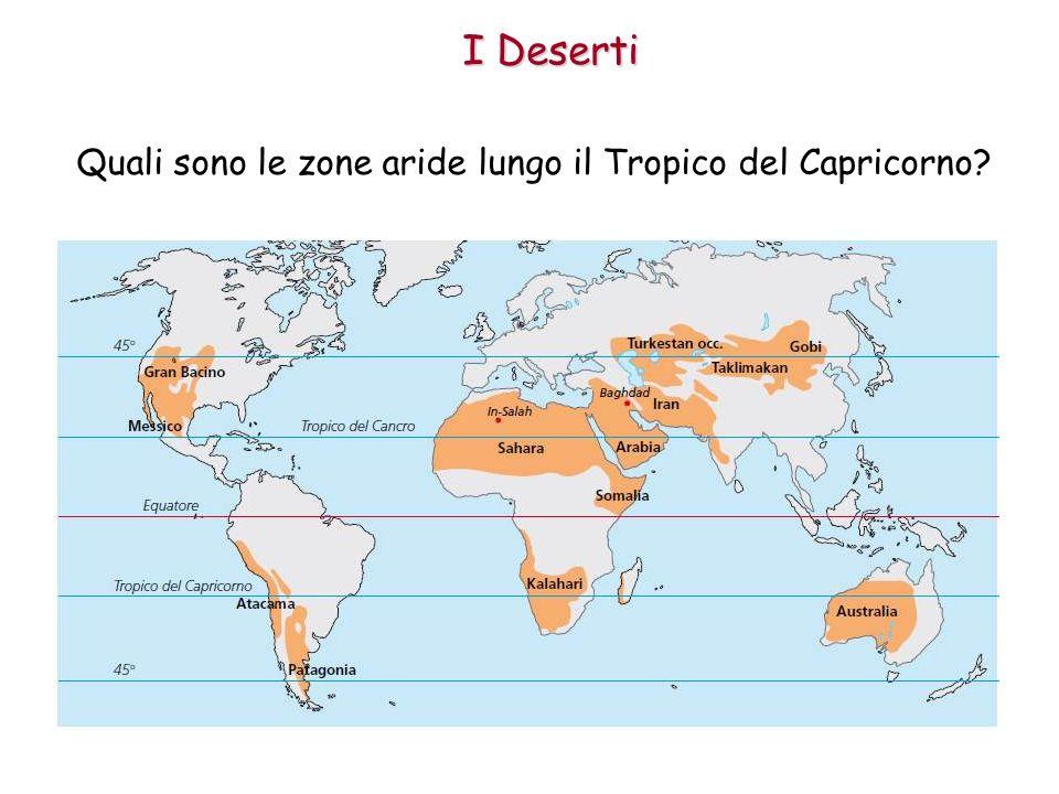 I Deserti Quali sono le zone aride lungo il Tropico del Capricorno?